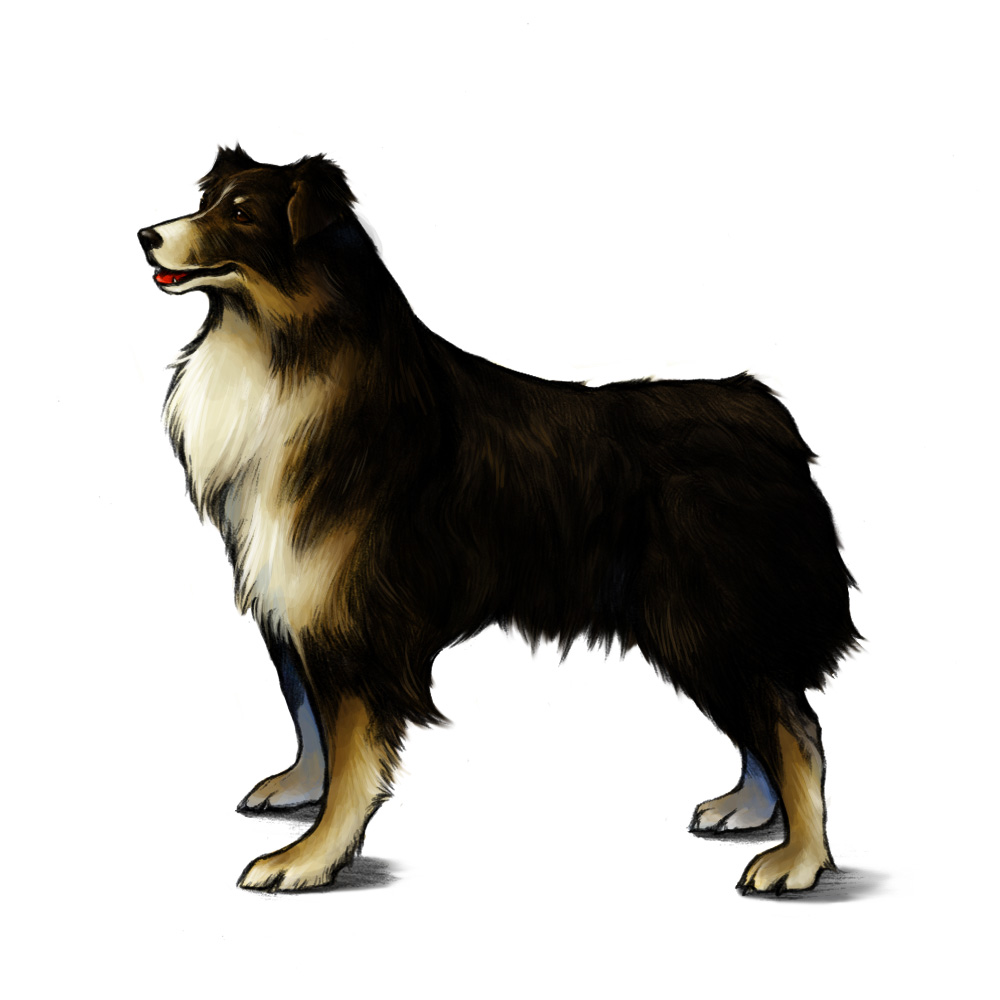 Final Fantasy VIII Remastered International Dog Day Angelo Artwork