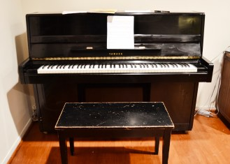 January 5: in AWE that there is a piano in the Caversham house