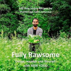 Fully Rawsome Rawfood Vegan Book