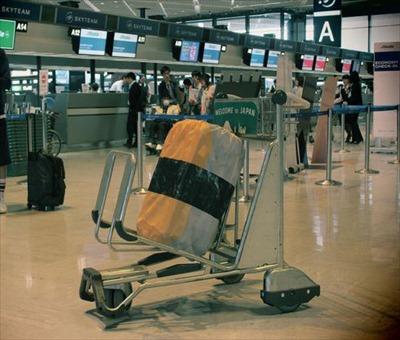寿司スーツケースカバー5