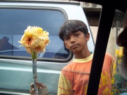 Flower seller in Mumbai