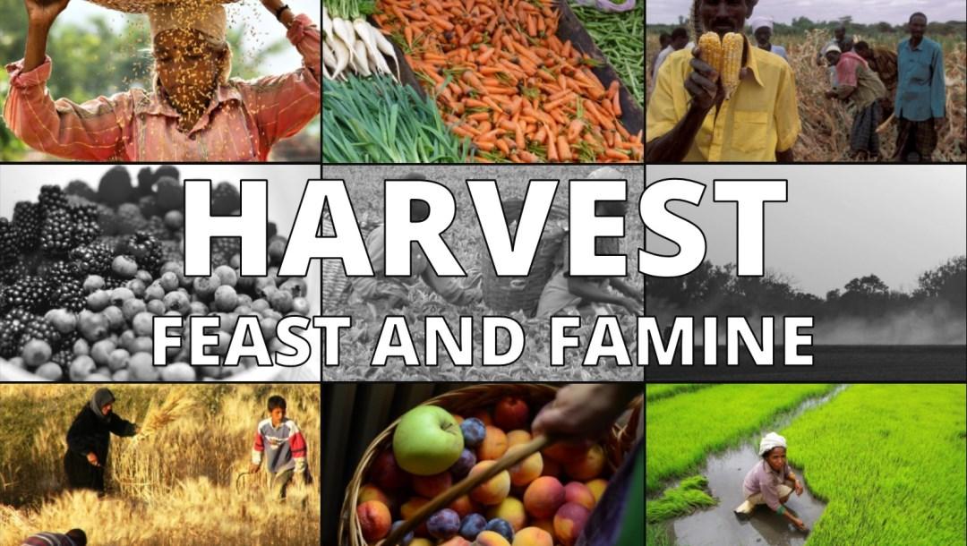 Harvest – Celebration – 1 Samuel 1: Dave Sewell