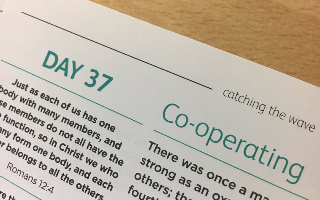 Co-operating – reflections from Sue Chastney | Day 36 | catching the wave | Focus on 40