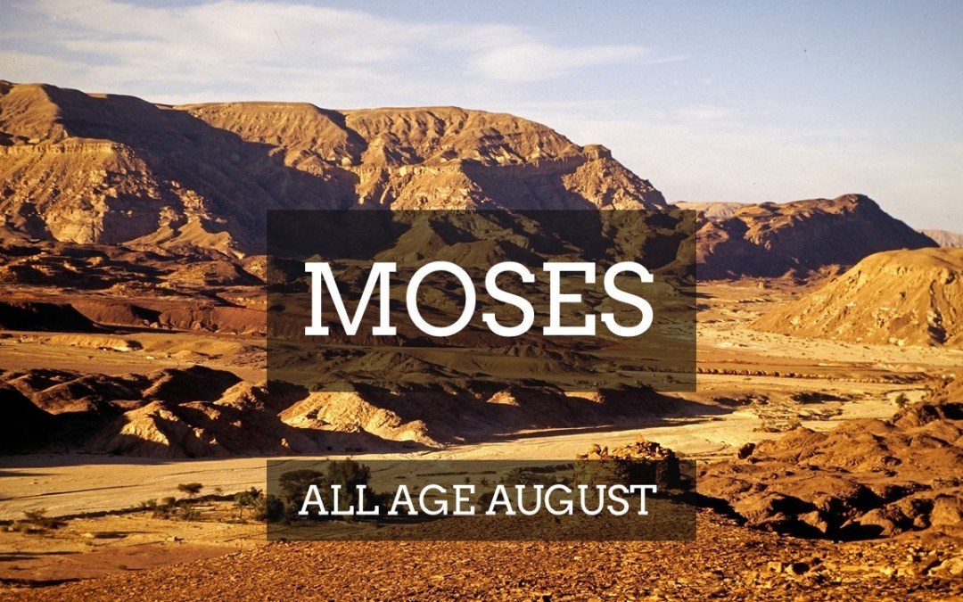 MOSES | All Age August | Talks Series – August 2018