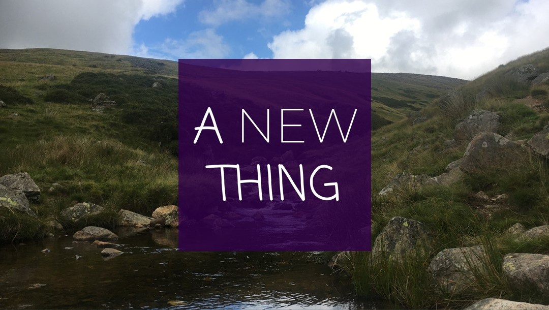 A New Thing – What do you see? | Sunday 31st January 2021 @ 11:00am