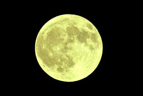 月見で一杯!