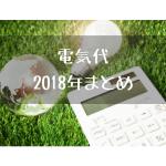 【実録】2018年の電気代まとめ