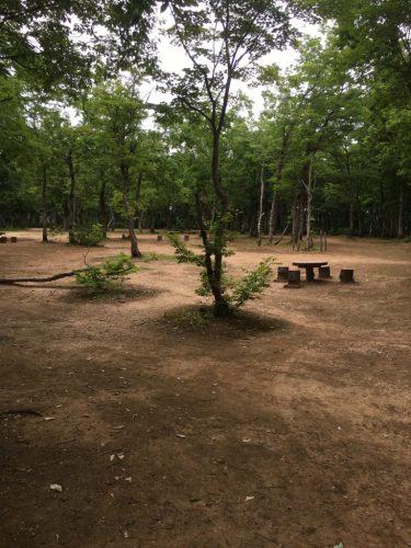 長岡市キャンプ場おぐに森林公園に宿泊!温泉は?遊具はある?