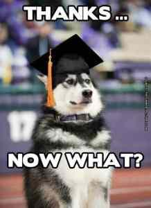 university franchise options