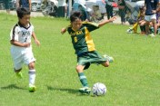 kyosaicup_20170806_103
