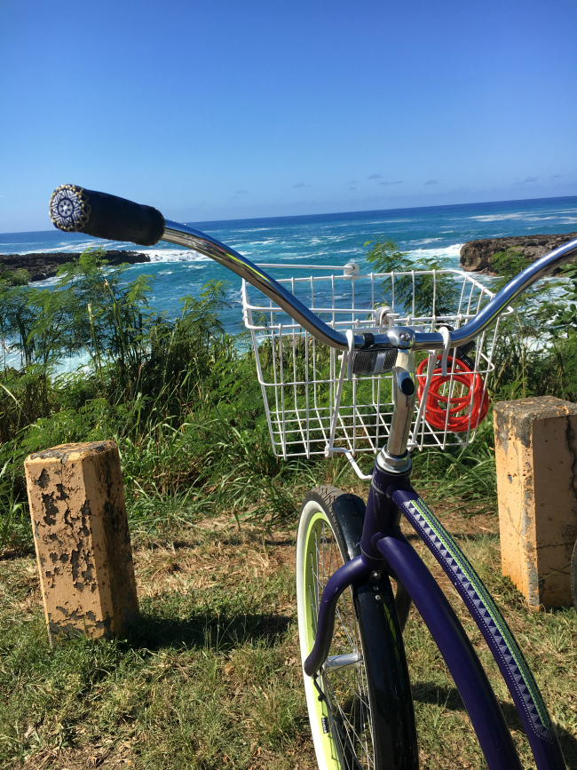 Things to do on North Shore Oahu
