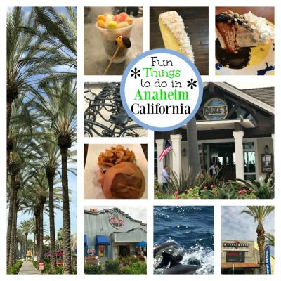 Anaheim Vacation Ideas