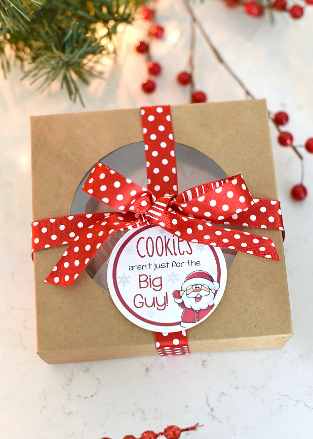 Easy Cookie Christmas Gift for Friends or Neighbors