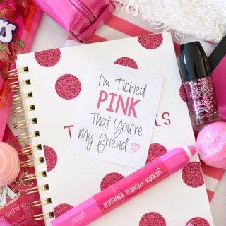 Tickled Pink Christmas Gift for a Friend