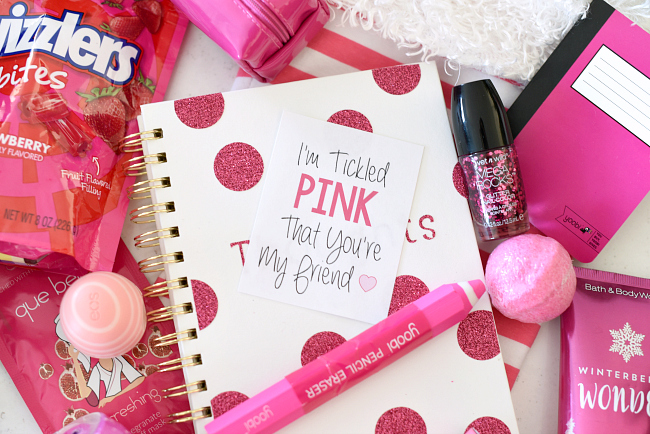 Cute Christmas Gift Ideas For Friends.Cute Tickled Pink Christmas Gift Idea Fun Squared