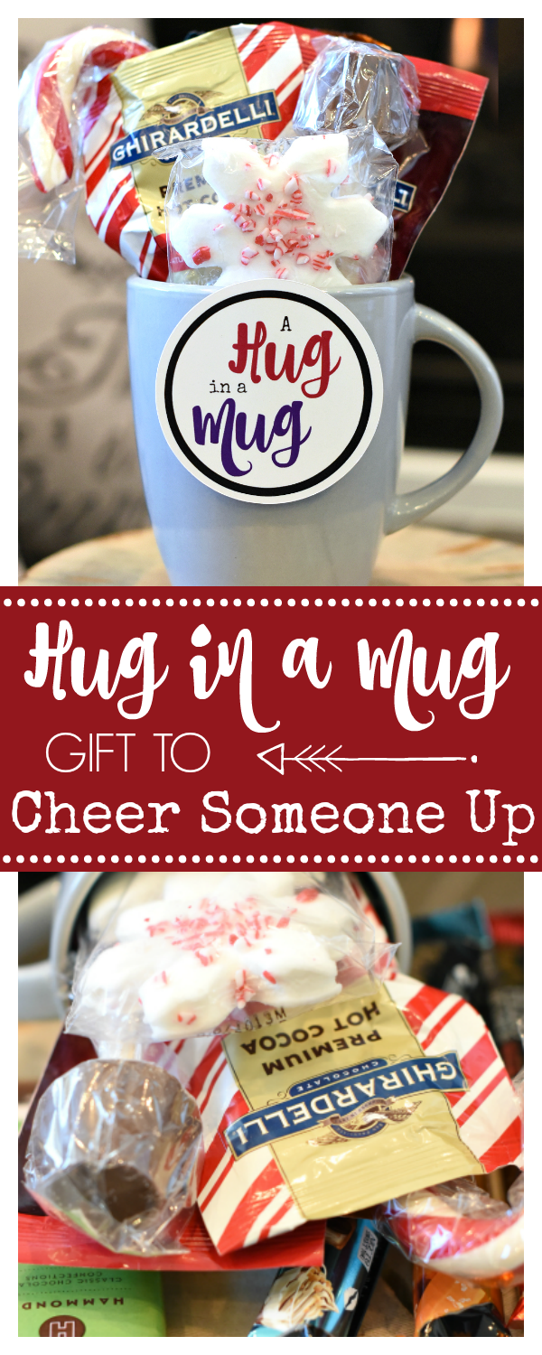 Hug in a Mug Gifts to Cheer Someone Up
