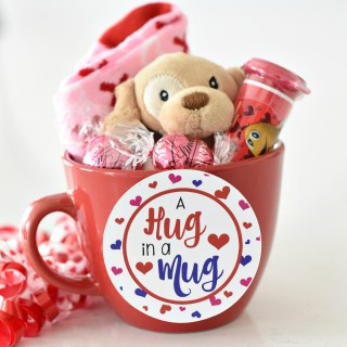Valentines Gift Idea for kids