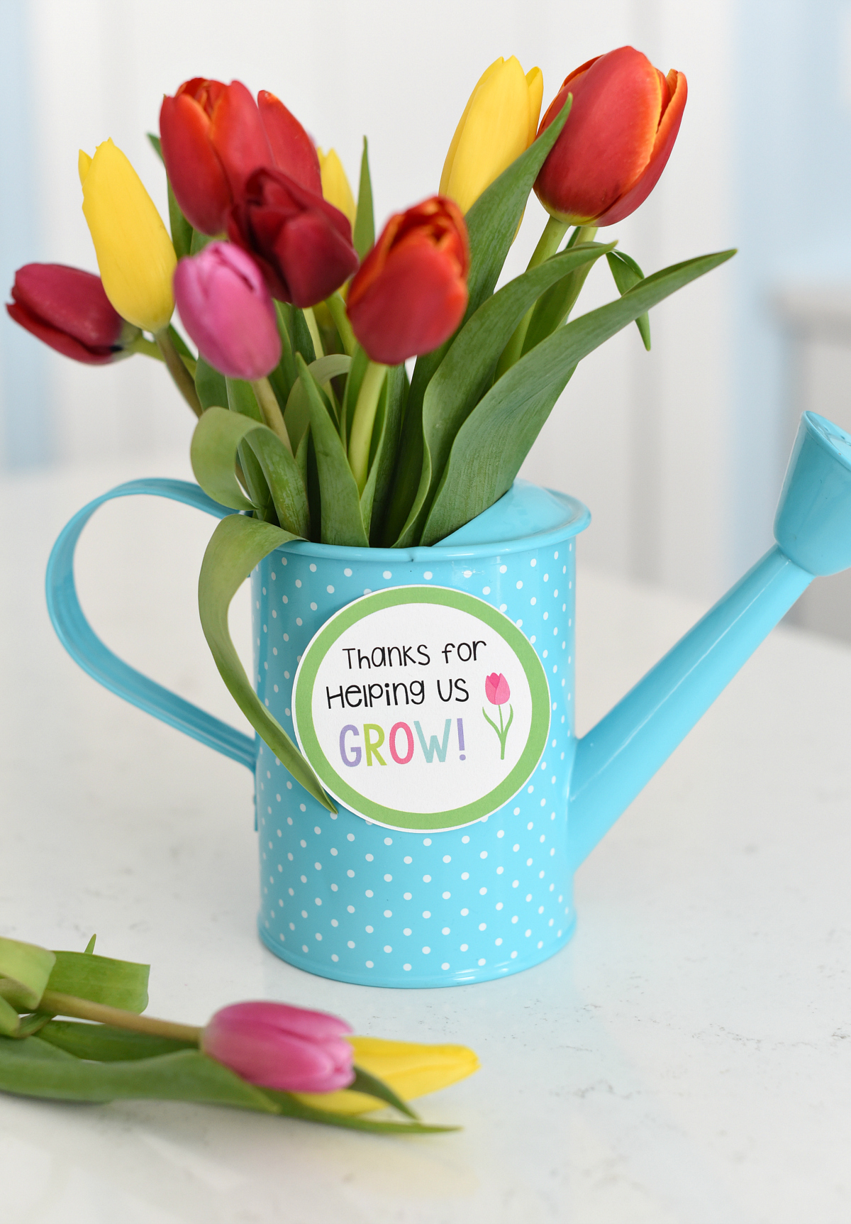 Flower Teacher Gift Idea