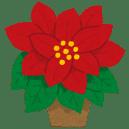 flower_poinsettia