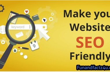 How to Make User Friendly SEO Website in Wordpress