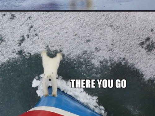 Good guy polar bear…