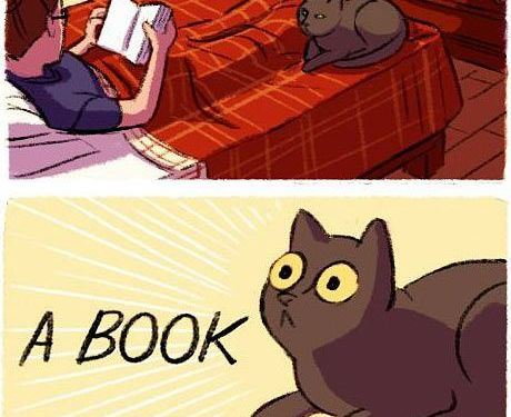 Books, the other catnip…