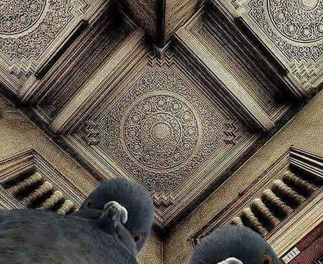 The photographer was lying on the ground, trying to shoot this ceiling. The pigeons were concerned.