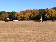 it was a gorgeous day for XC.
