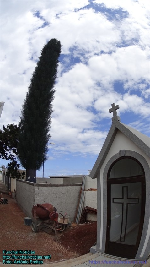 cemiterio-sta-cruz000