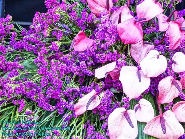 flores05