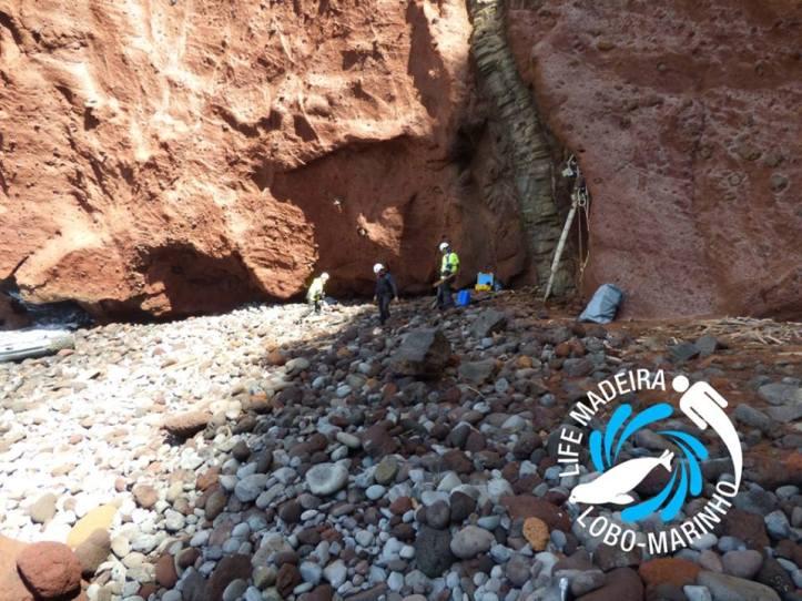 Desertas Serviço Parque Natura Madeira 2