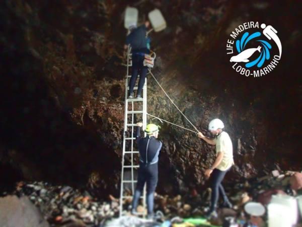 grutas lobo marinho1