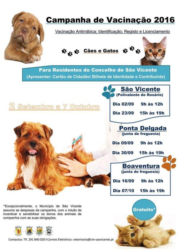 Campanha de Vacinação animais estimação S. Vicente