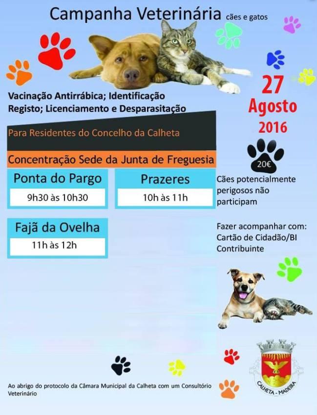 Campanha Veterinária Animais de Companhia