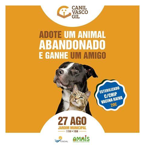 Canil Vasco Gil Adoção de animais agosto 2016
