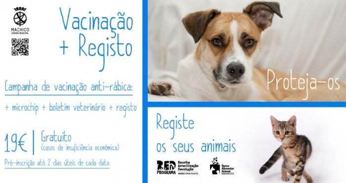 Vacinação e registo de animais Machico