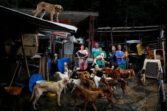 Abrigo para cachorro Famproa, localizado na cidade de Los Teques, na Venezuela (Carlos Garcia/Reuters)