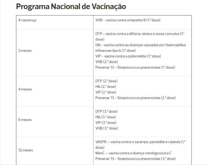 plano-nacional-de-vacinacao1