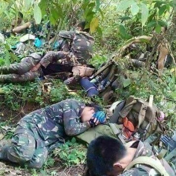 Herois-tailandia-05