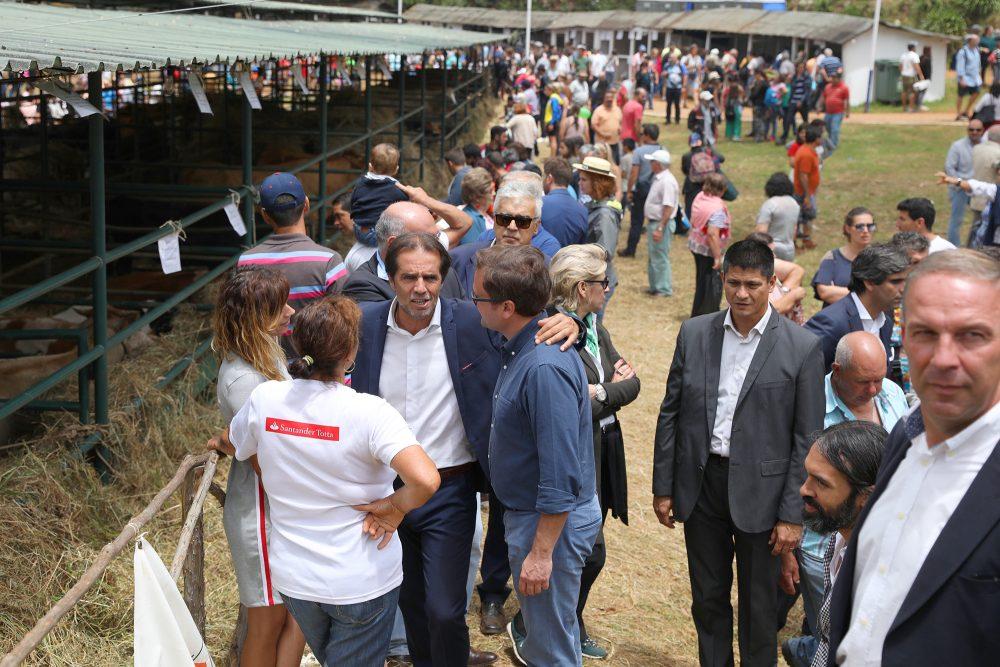 """Miguel Albuquerque na feira do gado: """"Não tenho de ser simpático, tenho de defender a Madeira"""""""