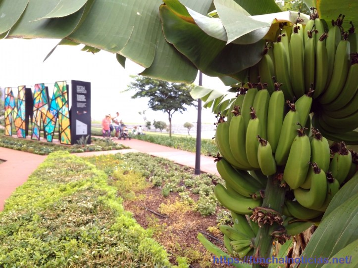 Bananeiras Praça do Povo