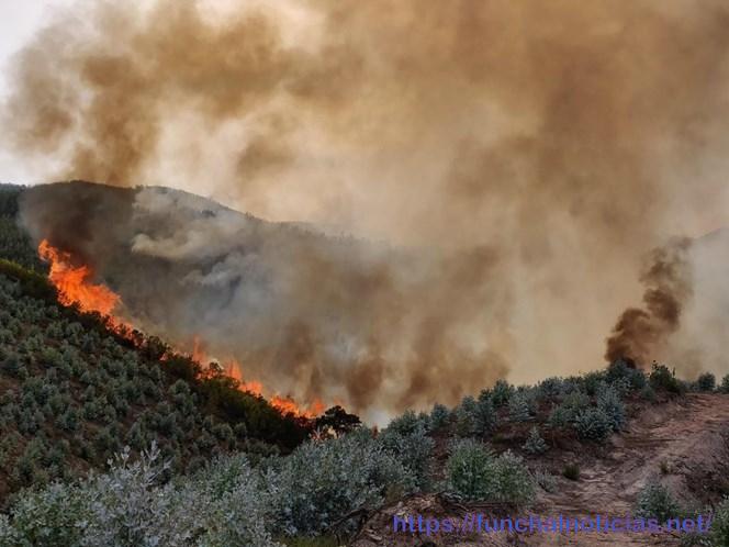 Fogo Monchique