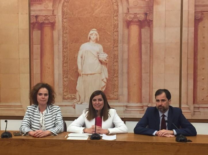 PSD-M Assembleia da Republica