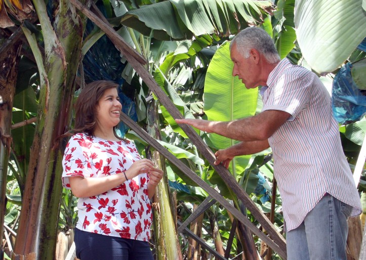 Cerdas Encontro bananicultores 18 de maio de 2019