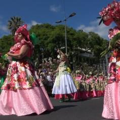 festa-flor-2019-025