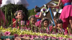 festa-flor-2019-084