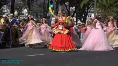 festa-flor-2019-128