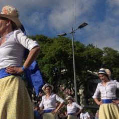 festa-flor-2019-167