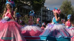 festa-flor-2019-194