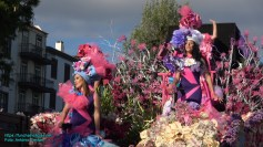 festa-flor-2019-198